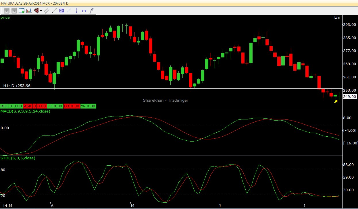 Natural Gas Short Term Outlook 15.07.2014