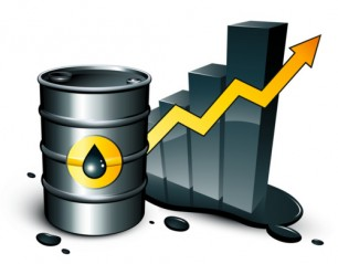 What is the OPEC Why it is important